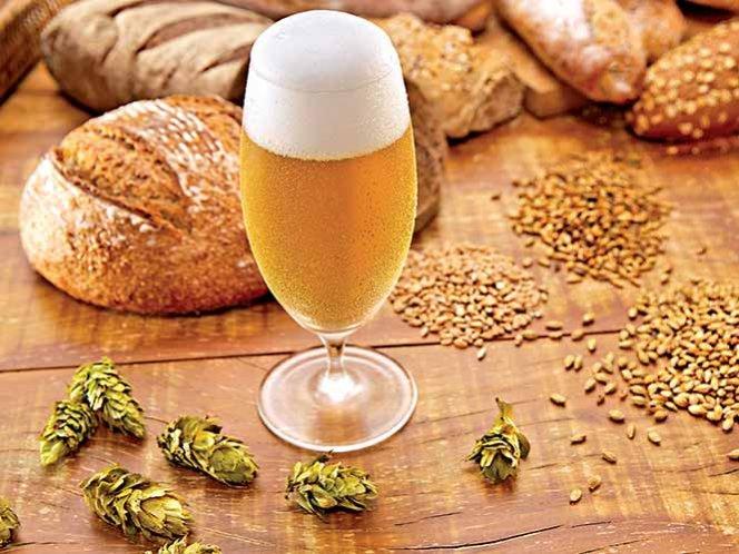 Insumos de Cerveza – Granos, Cerveza Artesanal